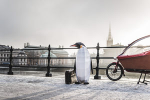 March of the Penguins in Stockholm