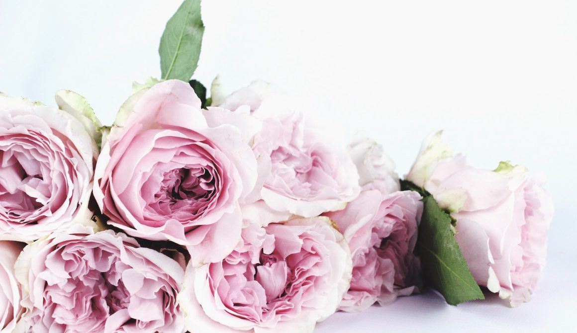 bloom-blossom-bouquet-122734