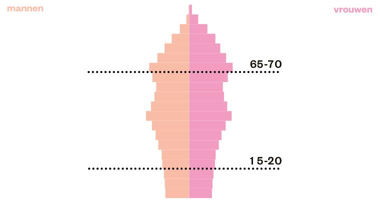 bevolkingspyramide doodskist