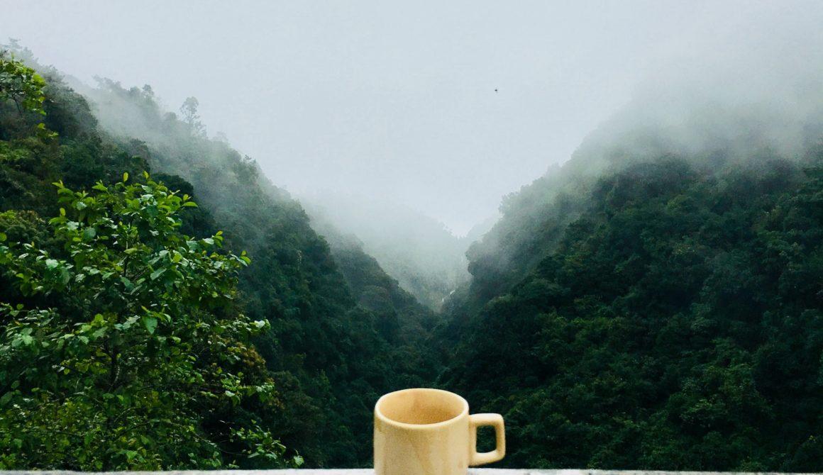 caffeine-coffee-cup-641038