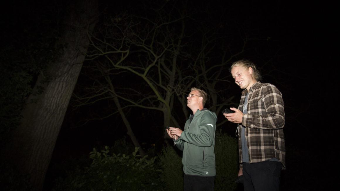 Vleermuizen-detecteren5