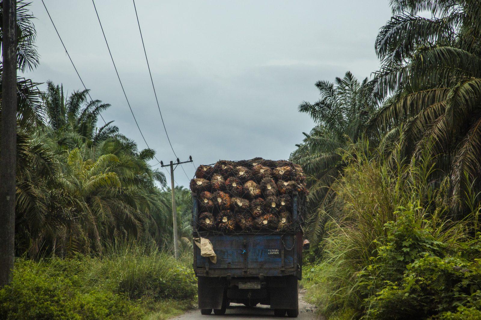 Vrachtwagen_OneWorld