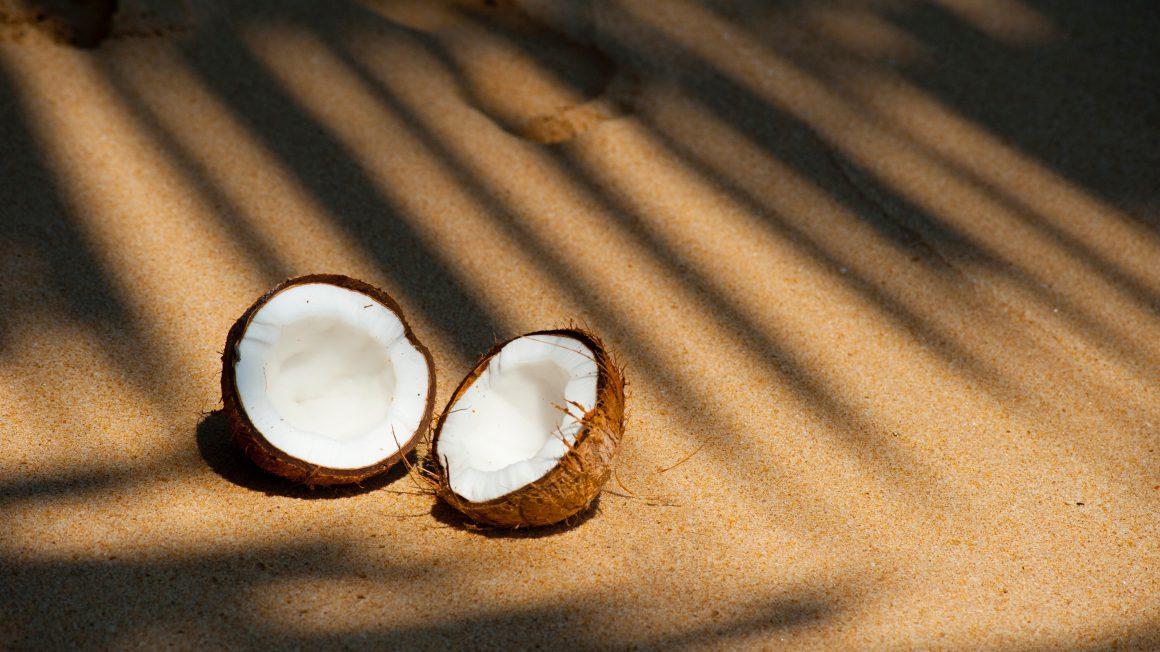 beach-coconut-delicious-322483