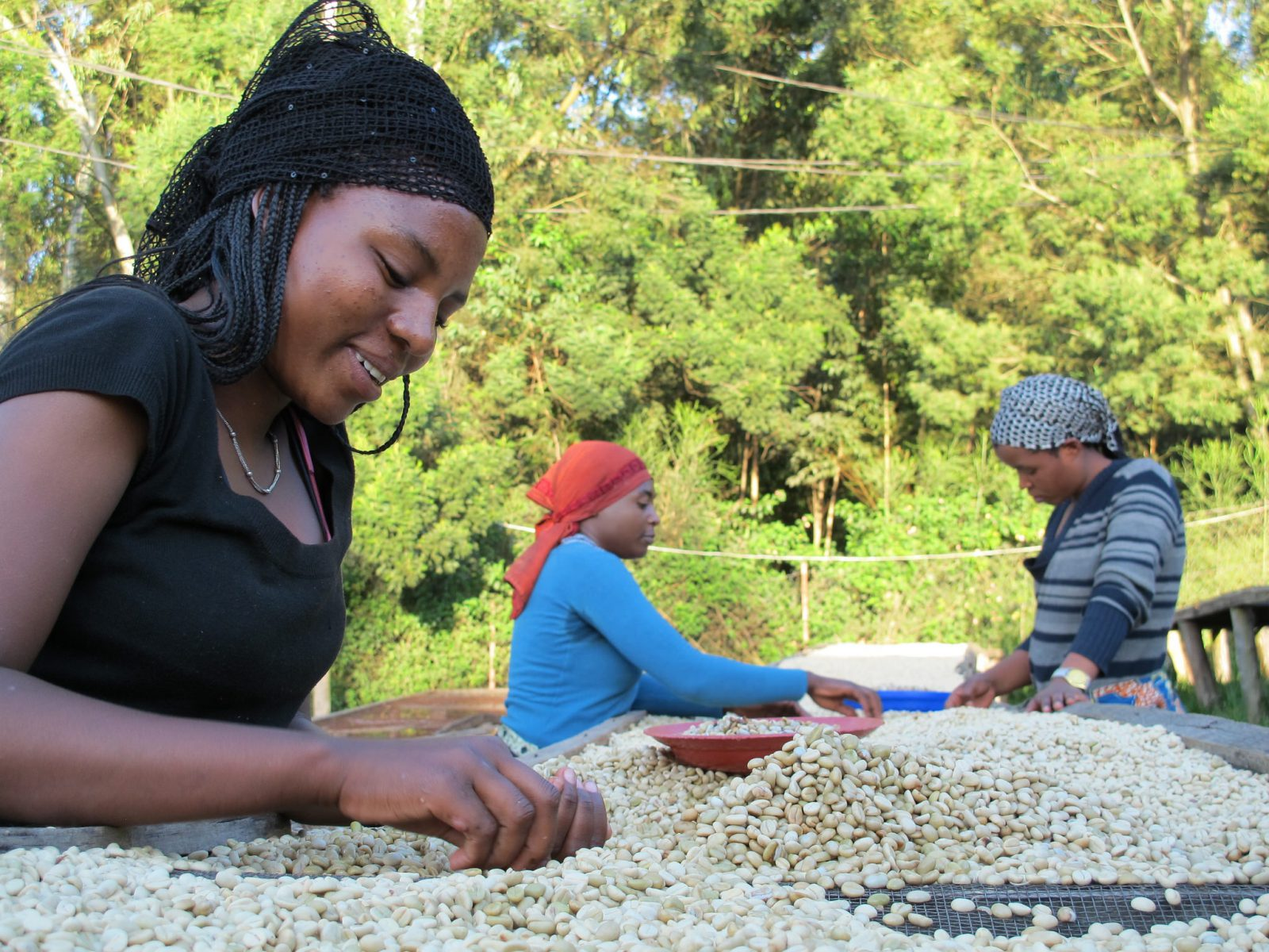 Coffee-sorters-at-Maraba-smallholder-coffee-cooperative-in-Butare-Rwanda.-Credit-Rainforest-Alliance-1.jpg