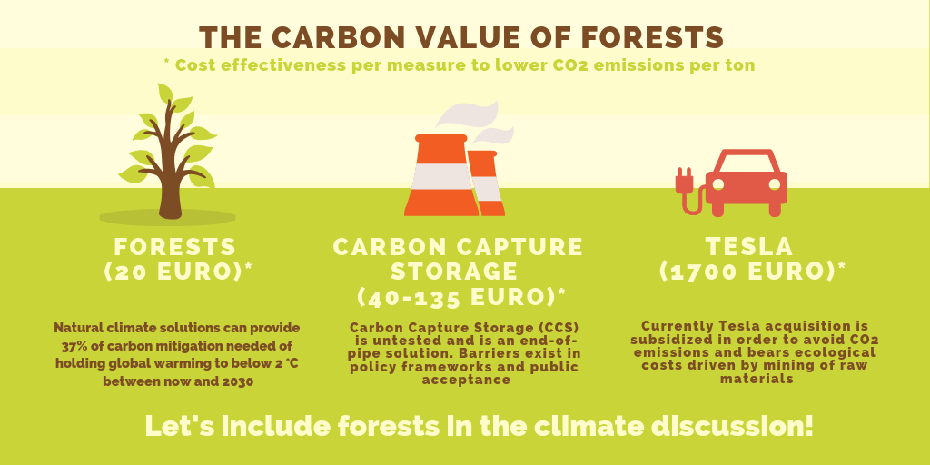 The-carbon-value-of-forests.png