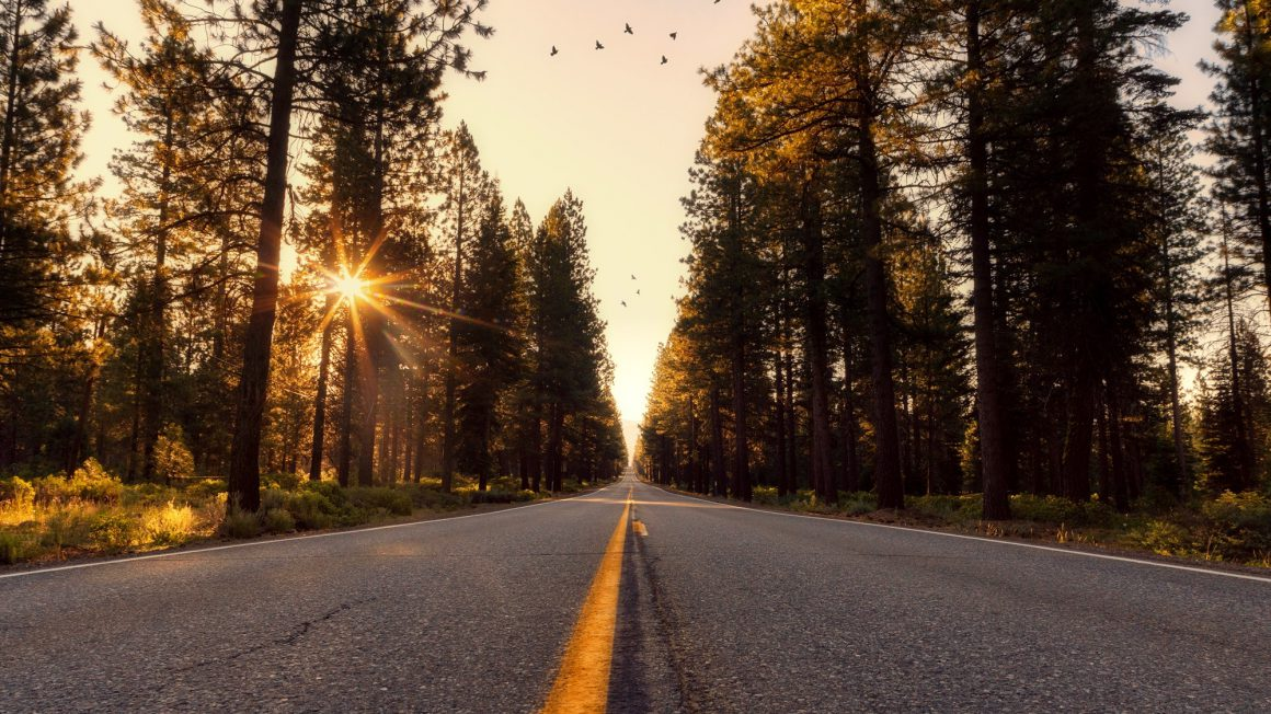 adventure-asphalt-california-533671