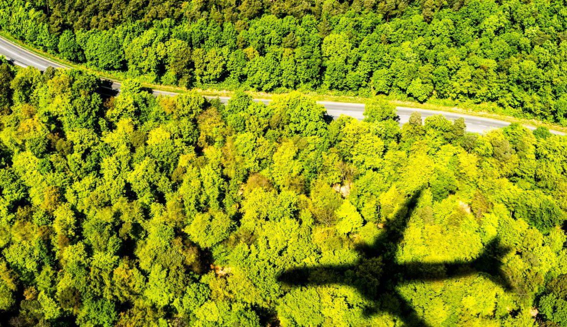 Vliegtuig-en-bomen.jpg