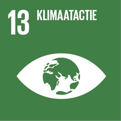 SDG-icon-NL-RGB-13