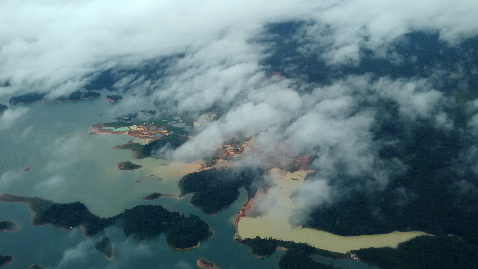 goudvelden-aan-voet-van-beschermd-natuurreservaat-Brownsberg-1