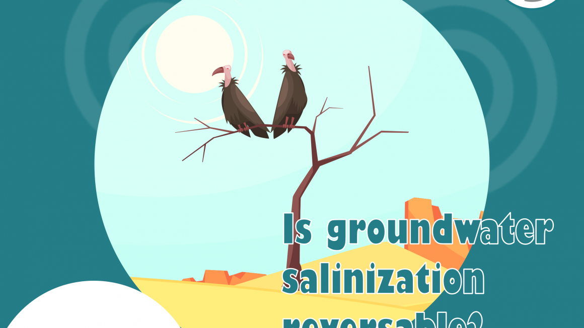 salinization-post-2.png
