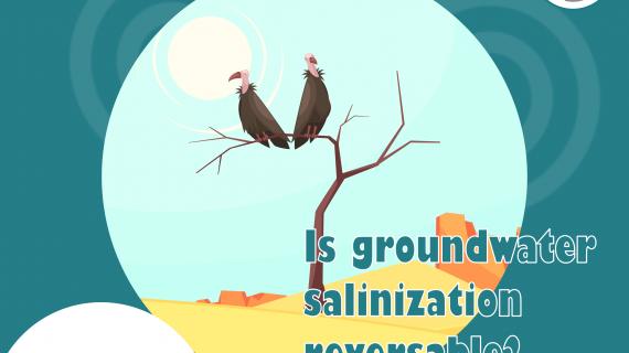 salinization-post-2.png
