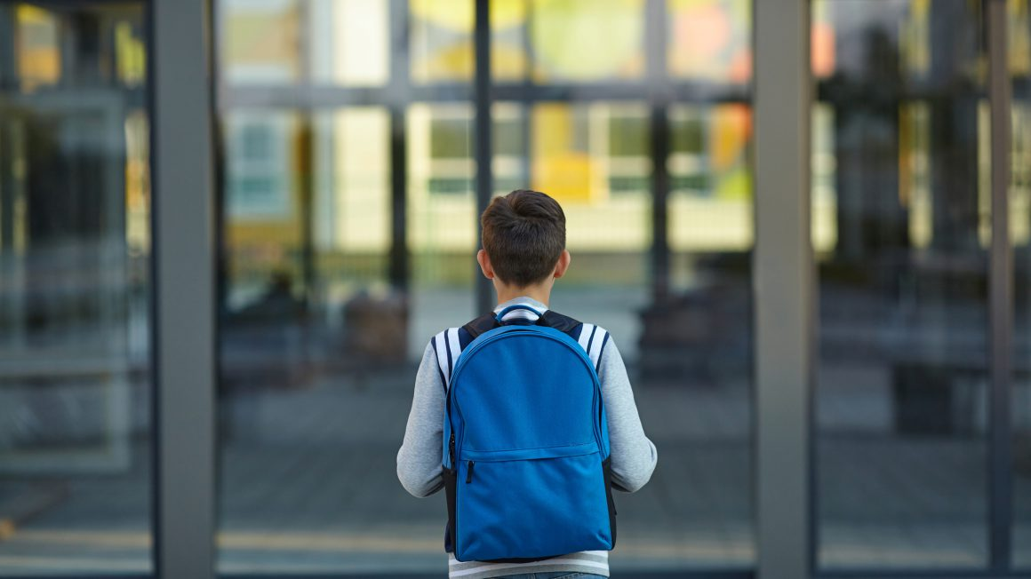 Schoolboy stands in front of the school door